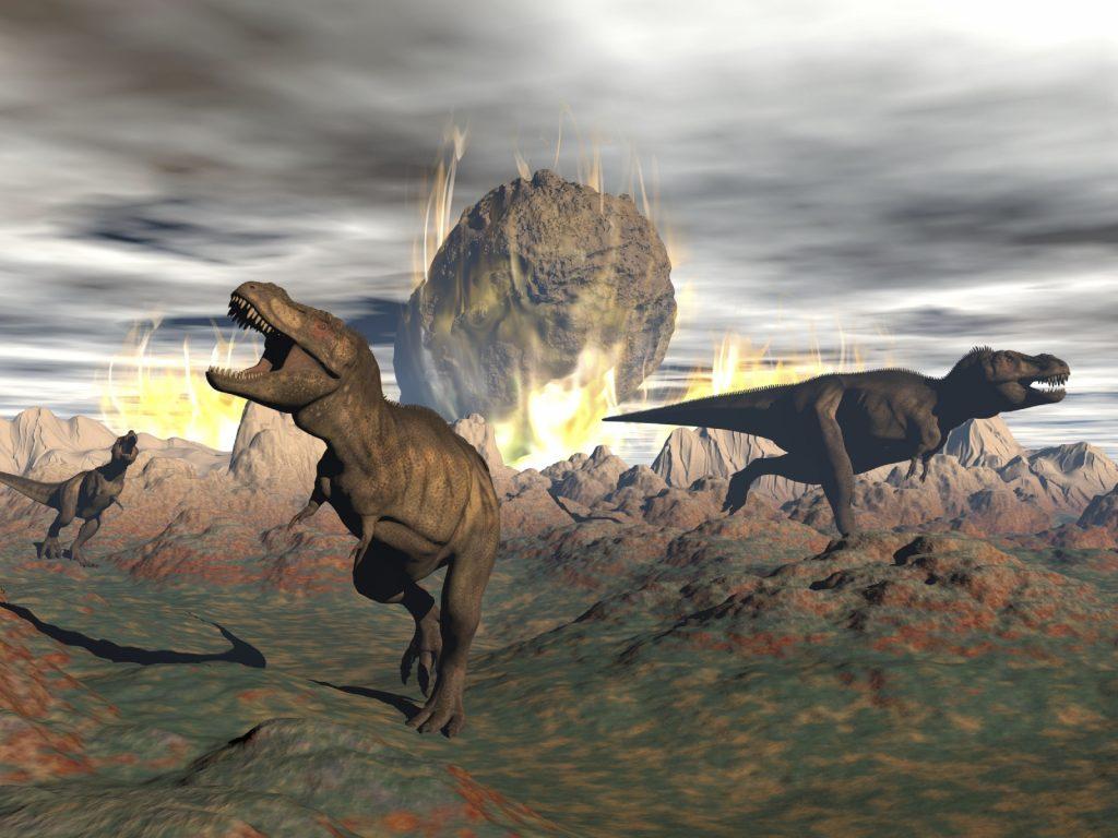 Transformation numérique ou finir comme les dinosaures